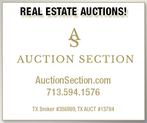 Auction Section